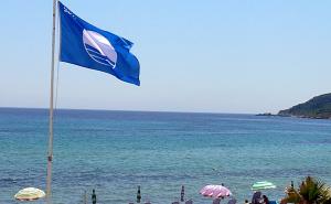 Пахомов: До 150 пляжей в Сочи соответствуют международным стандартам
