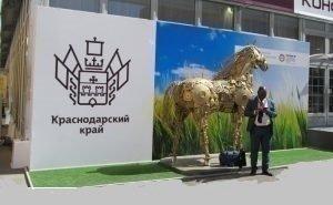 На ПМЭФ Краснодарский край представит проектов на 300 млрд руб.