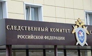Бастрыкин передал дело о гибели на Кубани 9-летней девочки в центральный аппарат СК