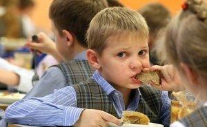 На Кубани станут проверять, какие продукты закупают в детсады и школы