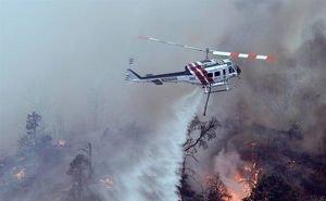 К борьбе с лесными пожарами на Кубани пришлось привлекать авиацию