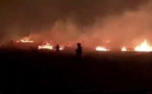 В Анапе продолжают гореть плавни
