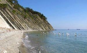 В Геленджике провели эксперимент с убыточными пляжами