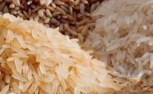 Краснодарский край увеличил запасы риса-сырца