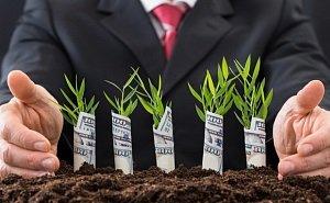 Кубань начнёт привлекать больше иностранных инвестиций в АПК