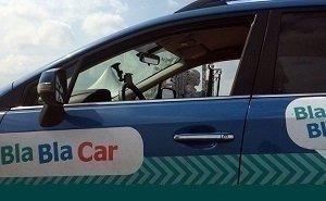 Пропавшая по дороге из Петербурга в Туапсе ехала на BlaBlaCar в компании трёх мужчин