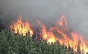 На Кубани объявлен 4-й класс пожароопасности