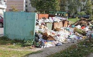 Причину распространения клещей на Кубани видят в мусоре, который едят крысы