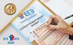 Сдавать пробные ЕГЭ и ОГЭ онлайн на Кубани смогут до 6 тысяч человек в день