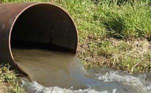 Кто ответит за экологическое преступление на реке Адагум?