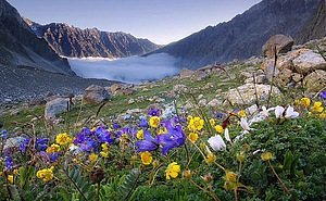 В горах Сочи исчезло целое озеро