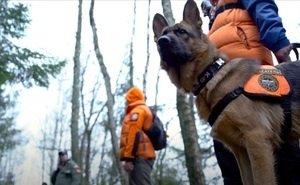 В Сочи поисковики-волонтёры возобновили тренировки