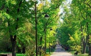 В Краснодарском крае за три года создали и обновили более 450 парков и скверов