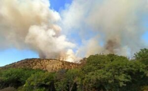 За спасение из горящего Утриша с туристов требовали деньги