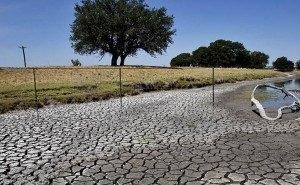 На Кубани разработан проект по восстановлению рек после засухи