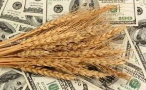 Краснодарский край увеличил экспорт продукции АПК на 17%