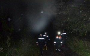 В Сочи спасатели несколько часов искали заблудившихся в лесу детей и их тренера