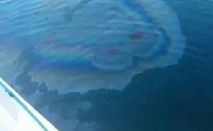 Специалисты выясняют природу пятен, появившихся в месте затопления «Адмирала Нахимова»