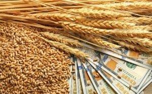 Кубань планирует экспортировать сельхозпродукцию в 2021 году на $2,7 млрд