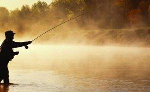 Рыбалка в Сибири и за ее пределами
