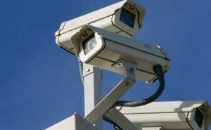 Вычислить догхантеров в Геленджике должны помочь видеокамеры
