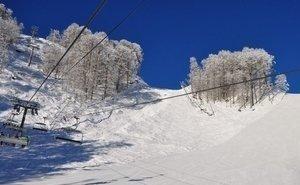 На «Розе Хутор» остановили продажу ски-пассов