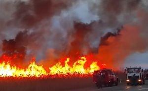 В Анапе горят плавни