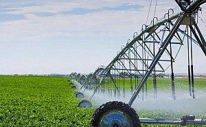 Площадь орошаемых земель на Кубани к 2025 году увеличат на 7%