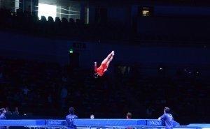 Сочи примет Чемпионат мира по прыжкам на батуте