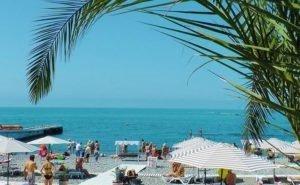 В Сочи создан Совет по развитию пляжей