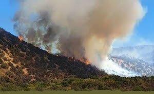 Пожар на «Утрише» нанёс 1 млрд рублей ущерба