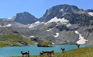 В Сочи хотят развивать экотуризм на особо охраняемых территориях