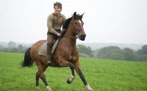 На Кубани начнут заниматься конными пробегами