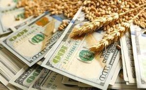 Краснодарский край наращивает экспорт сельхозпродукции