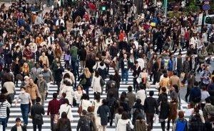 К 2040 году численность населения Краснодарской агломерации может вырасти втрое