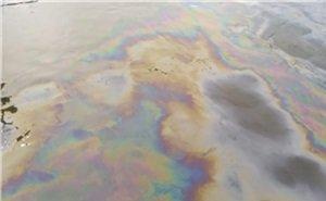 «Нарушитель до сих пор не найден»: в море у Туапсе появилось новое масляное пятно