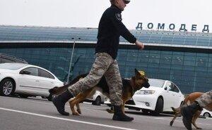 Рейс в Геленджик был задержан из-за сообщений о минировании