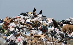 Под Тимашёвском приостановили строительство мусорного полигона