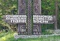 Почем дровишки из национального парка?